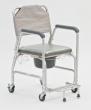 Кресло-каталка с туалетным устройством Armed FS699L